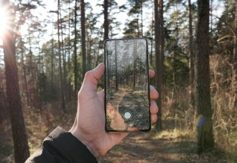 A hand holding a mobile phone with a photo of a surrounding forest.